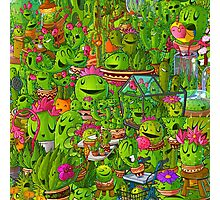 All the Cacti Photographic Print