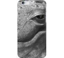 Bronze Frog iPhone Case/Skin
