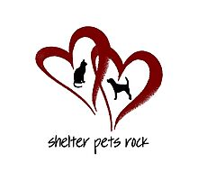 SHELTER PETS ROCK Photographic Print