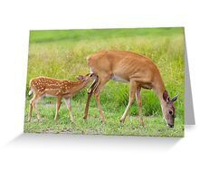 In one end...and out the udder - Deer Greeting Card