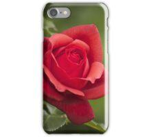 Rose Terracotta iPhone Case/Skin