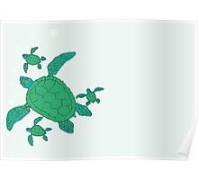 Green Sea Turtle Family Poster