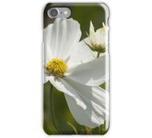 Garden Cosmos iPhone Case/Skin