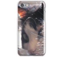 Fur Collar iPhone Case/Skin