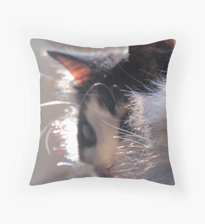 Fur Collar Throw Pillow