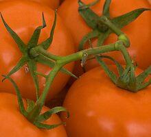 tomatoes, orange by David Chesluk