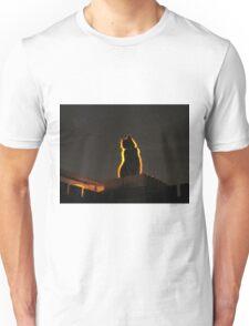 Mystery Cat Unisex T-Shirt