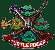 Turtle Power! by juanotron