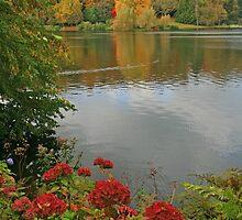Autumn At Stourhead by RedHillDigital