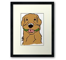 Playful Golden Retriever Framed Print