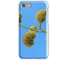 Plant iPhone Case/Skin