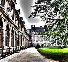 Fontainebleau, Ile de France by Sama-creations