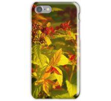 Spiraea Magic Carpet iPhone Case/Skin