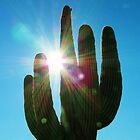 Holding the Morning Sun by Alberto  DeJesus