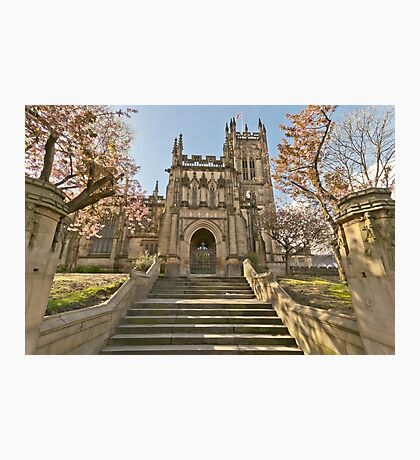 Manchester Cathedral and the Cherry Blossom Photographic Print
