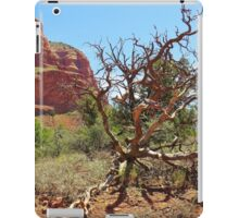 Sedona Landscape, Arizona iPad Case/Skin