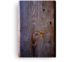 Old Wood Texture 02 Canvas Print