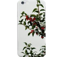 Holly in the Snow iPhone Case/Skin