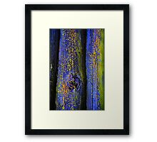 Old Wood Texture 03 Framed Print