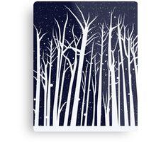 Snowy Winter Night Metal Print