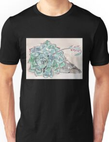 Echeveria imbricata  Unisex T-Shirt