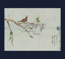 The Songbird Baby Tee