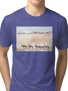 Meet South Africa! Tri-blend T-Shirt
