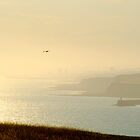 Westward Haze by mikebov
