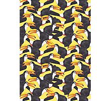 Toucan [yellow] Photographic Print
