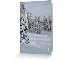 Serene Snow Scene Greeting Card