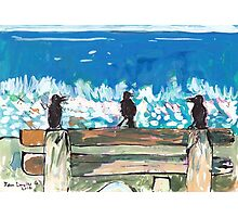 Three Birds Talking on a Bench by the Sea, Colombo Photographic Print