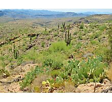 Tonto Forest State Park, Arizona Photographic Print