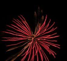 Firework Flower Sticker