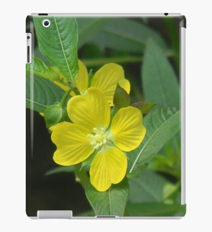 Mexican primrose-willow, Narrow-leaf Water Primrose iPad Case/Skin