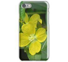 Mexican primrose-willow, Narrow-leaf Water Primrose iPhone Case/Skin