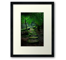 Mother Earth - Tarkine Rainforest Framed Print