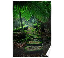 Mother Earth - Tarkine Rainforest Poster