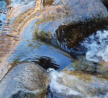 West Fork of the Carson River by Jared Manninen