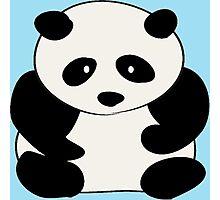 Chubby Panda Photographic Print