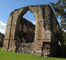 Lilleshall Abbey View 6 by Lawson Clout