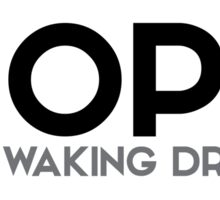 hope is a waking dream - aristotle Sticker
