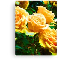 My Surreal Apricot Roses Canvas Print