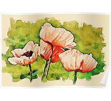Pink Poppies - textured Poster