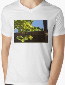Overhead Grape Harvest - Summertime Dreaming of Fine Wines Mens V-Neck T-Shirt