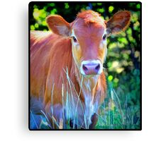 """Paint"" The Cow Canvas Print"