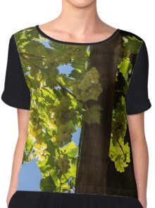 Overhead Grape Harvest - Summertime Dreaming Of Fine Wines - A Vertical View Chiffon Top