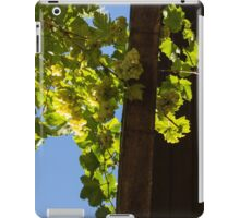 Overhead Grape Harvest - Summertime Dreaming Of Fine Wines - A Vertical View iPad Case/Skin