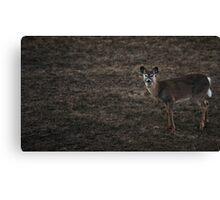 """""""Deer"""" Canvas Print"""