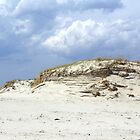 Sculpted Sand Dune - Island Beach State Park - NJ - USA by MotherNature