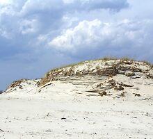 Sculpted Sand Dune - Island Beach State Park - NJ - USA by MotherNature